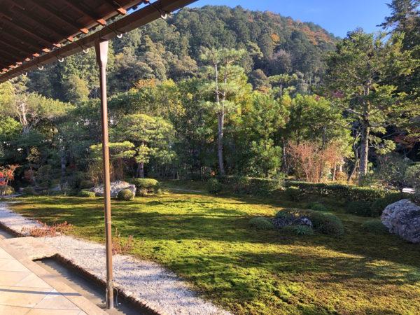 南陽院庭園