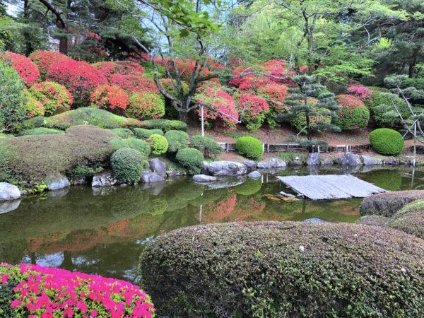 八幡山公園 日本庭園