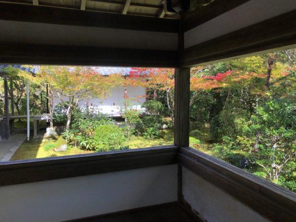 西明寺(苔庭)