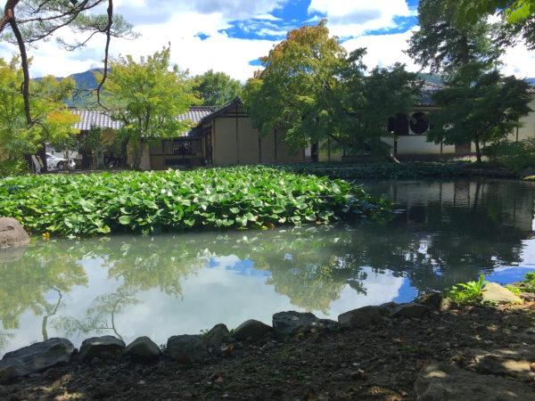 旧山寺常山氏庭園