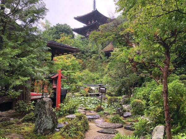 當麻寺 中之坊庭園 / Taima-dera Temple Nakanobou Garden, Katsuragi, Nara