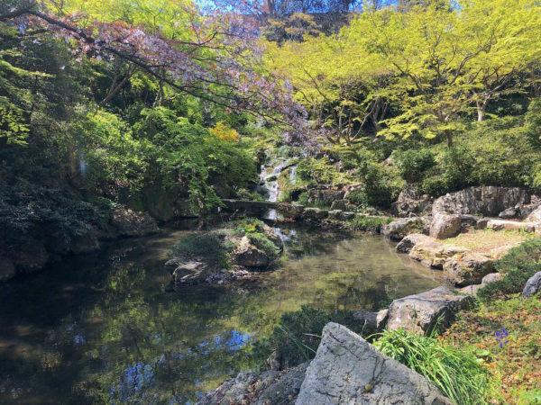 浜松城公園 日本庭園 / Hamamatsu Castle Japanese Garden, Hamamatsu, Shizuoka