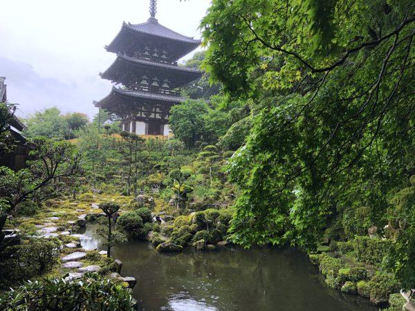 當麻寺 西南院庭園