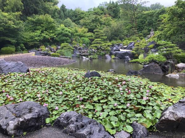 當麻寺 奥院庭園