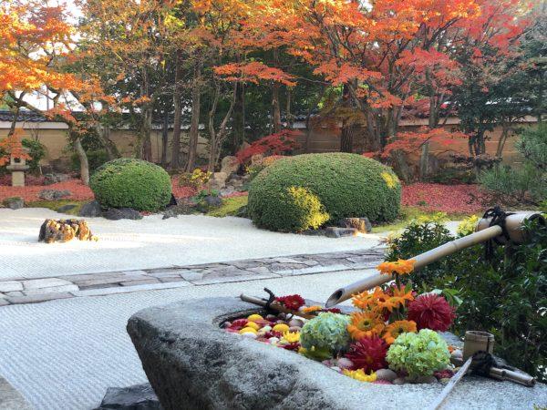 妙顕寺庭園