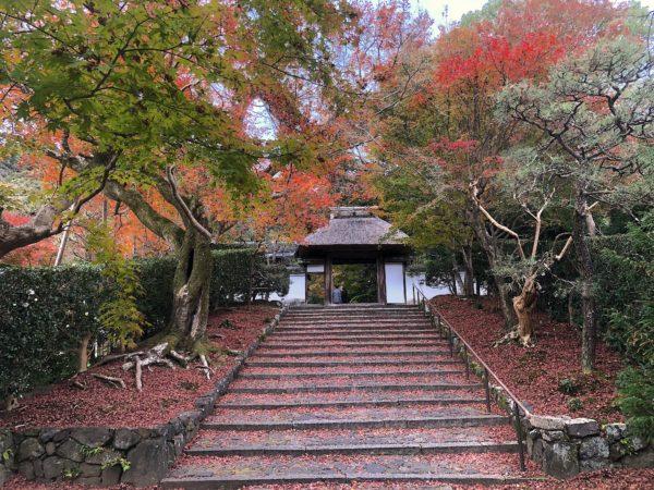 安楽寺庭園