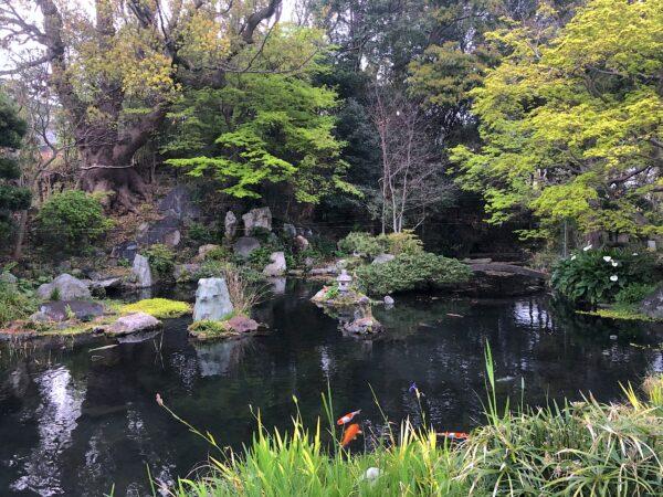 中泉歴史公園(旧秋鹿屋敷庭園)