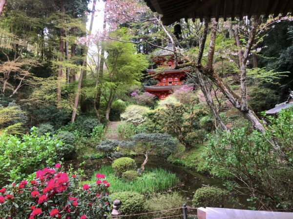 岩船寺庭園